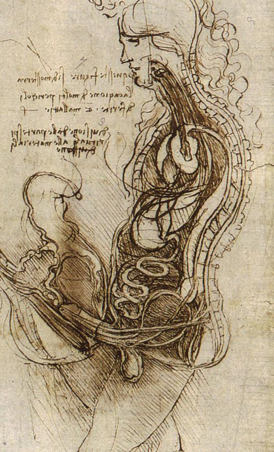 http://www.drawingsofleonardo.org/images/coition.jpg