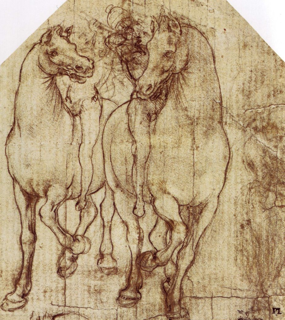 The drawings of leonardo da vinci study of horse and rider c 1480 ccuart Gallery