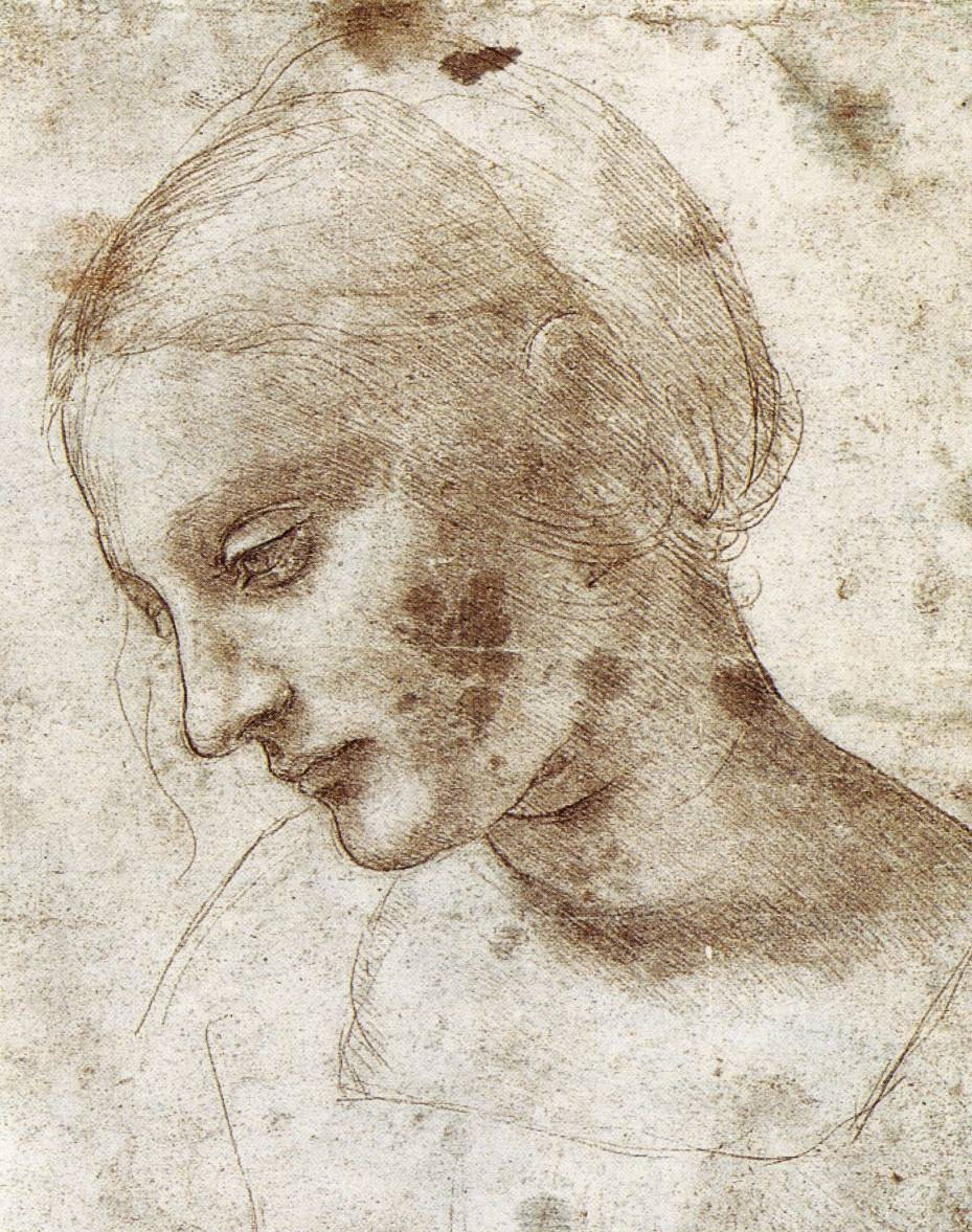 the drawings of Leonardo da Vinci